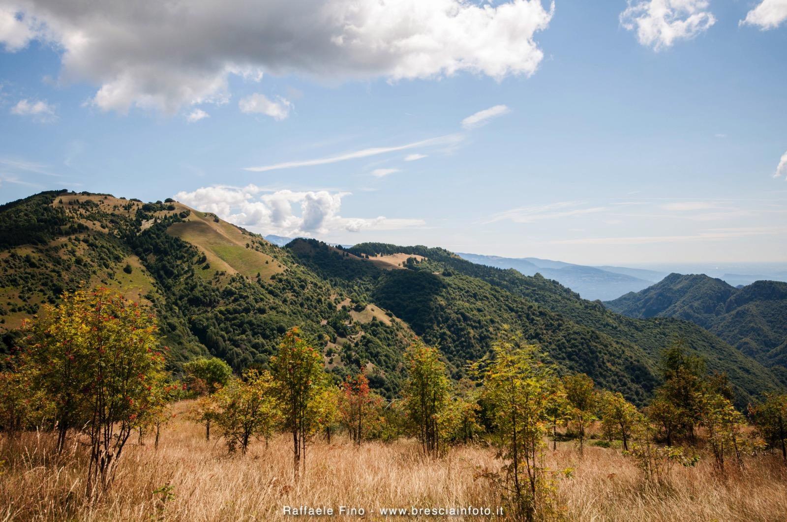 Monte Pallotto